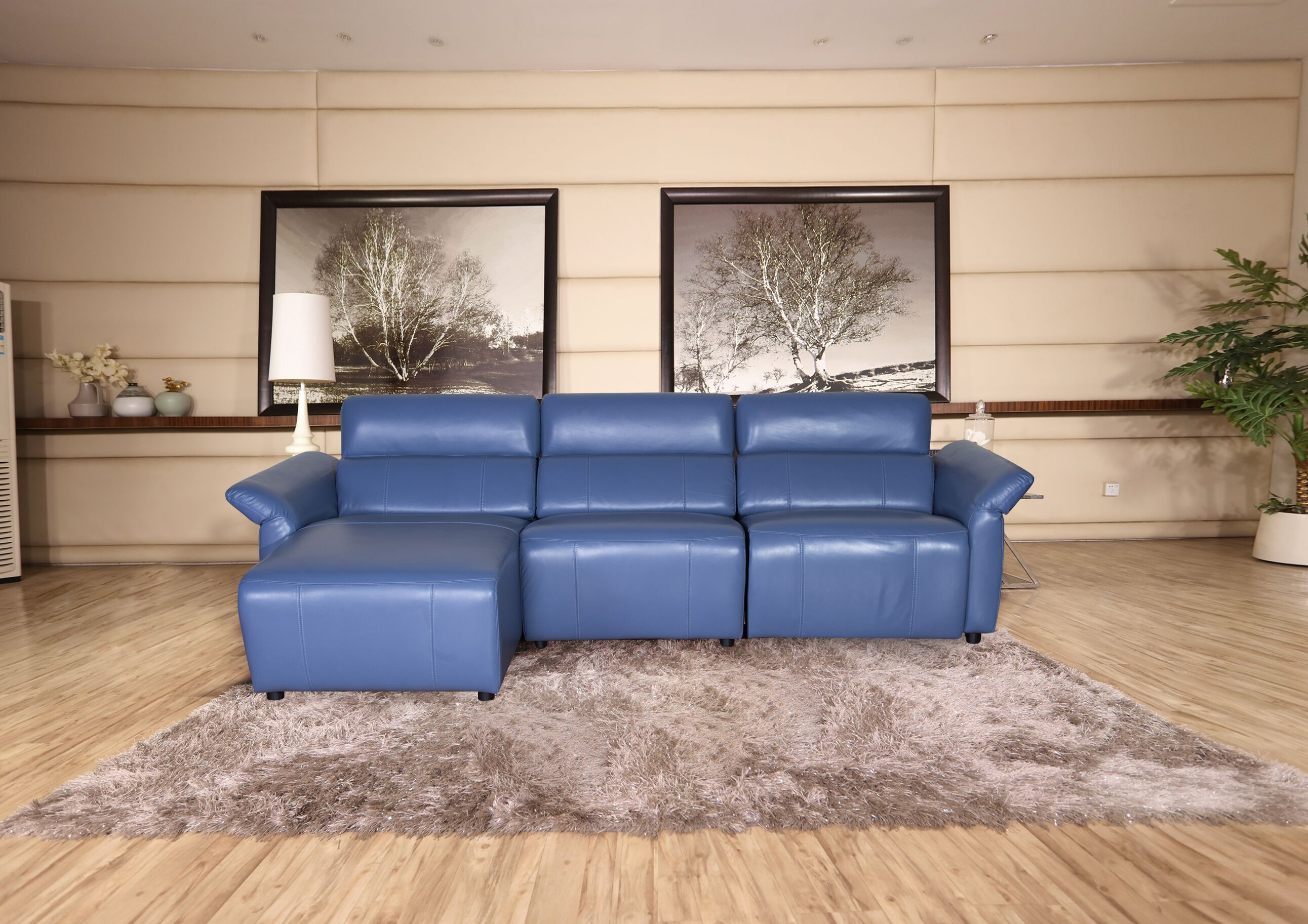 leather electric recliner sofa